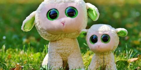 sheep-861071_640