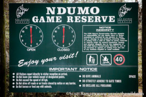Ndumo-Game-Reserve-copyright-Scott-N-Ramsay-www.yearinthewild.com-27